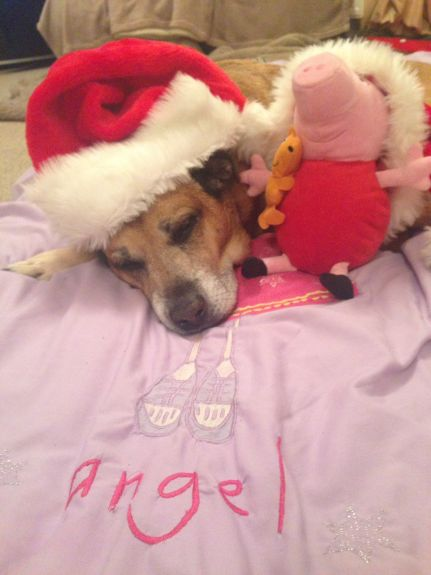 Snoozy Sandy Santa